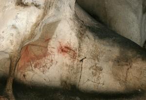 Visite approfondie @ Nestploria \ grottes de Gargas