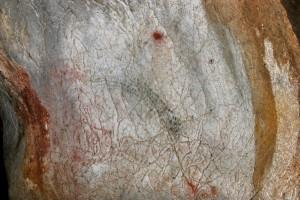 Visite approfondie @ Nestploria / grottes de Gargas